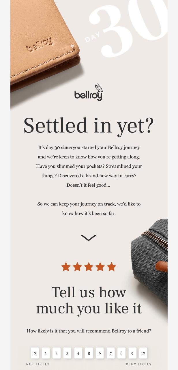 marketing survey example